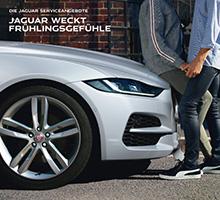 Jaguar Frühlingsangebote & Zubehör 2021